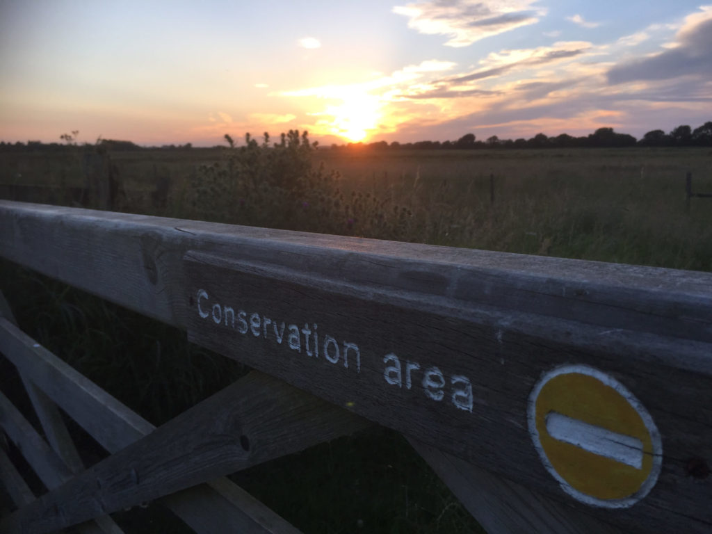 2015-RSPB-Otmoor-sunset