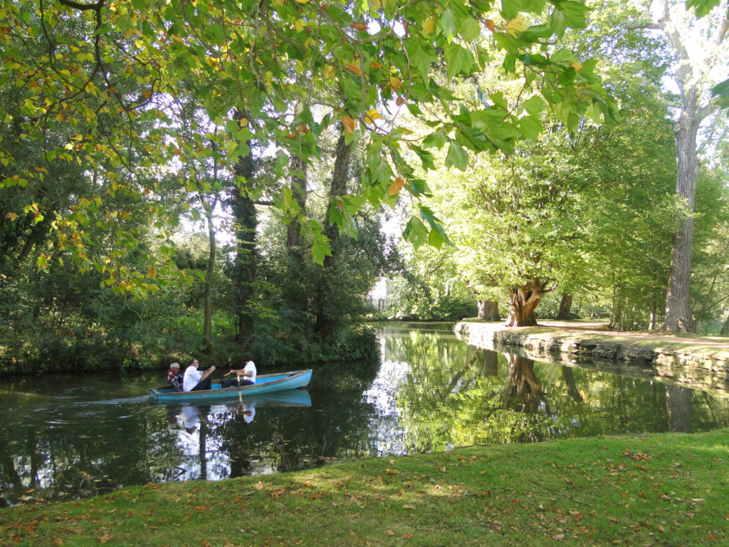 people in a rowing boat in the River Thames in Oxford