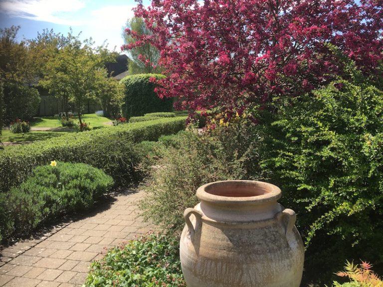Sunny Courtyard Garden
