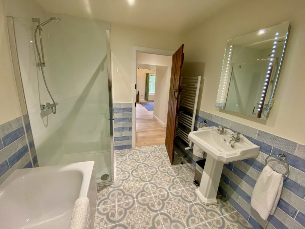 2020 Teal Family Bathroom with Shower